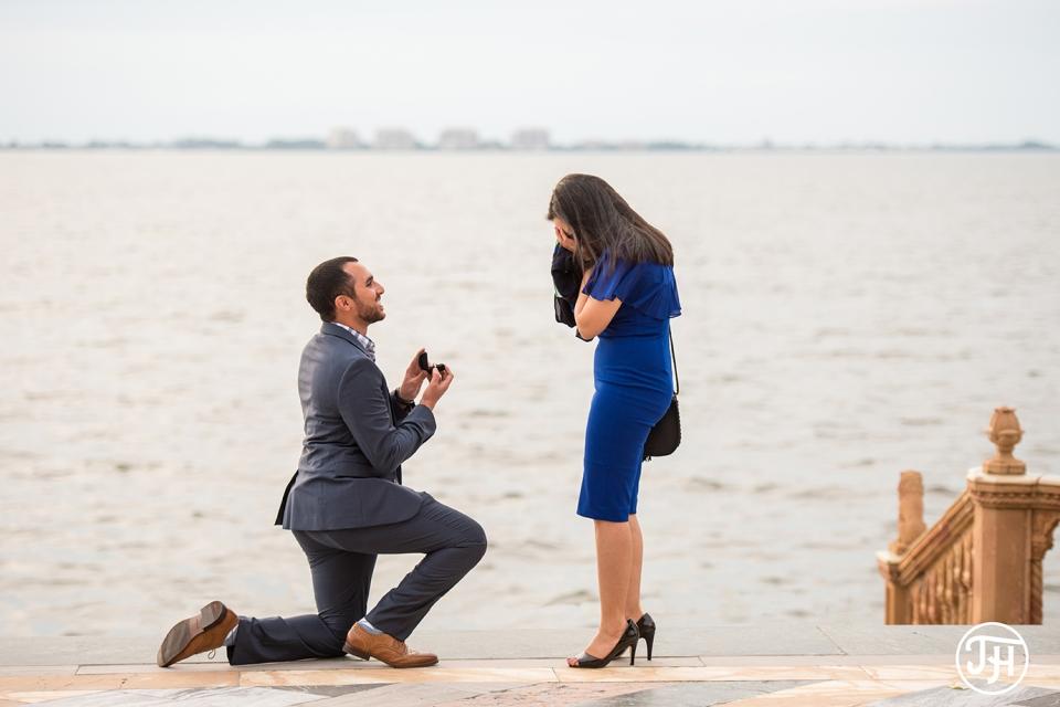 Andrew Merna Ca Dzan Ringling Museum Proposal Sarasota